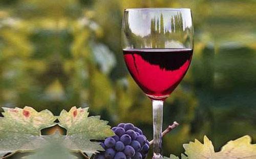 阿根廷红酒怎么样